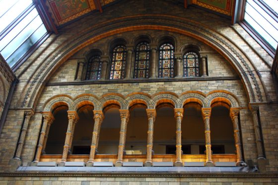 the natural history museum days out with children things to do in london with kids