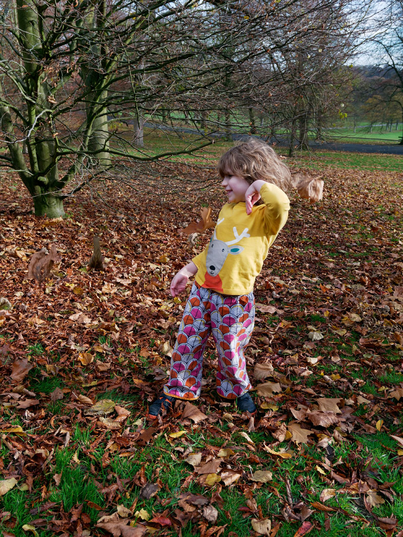 autumn day playing in dried leaves
