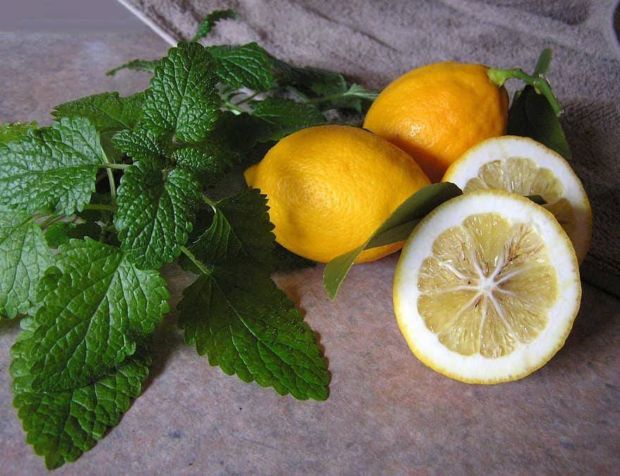 lemon balm flatlay with fresh sliced lemons
